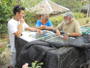 P Tong brings 200 fish for the aqua-ponics system.  Momo Cat and Steve look on the newest acquisitions.
