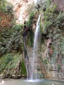 David's Falls at En Gedi